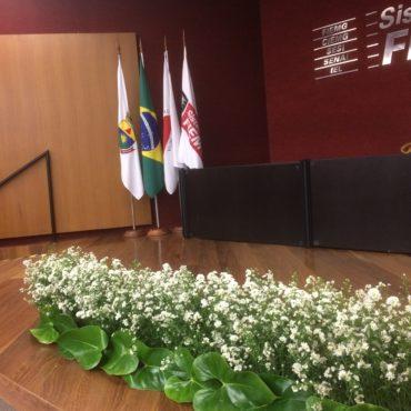 Detalhes Pemiação 2016 - Jornal Primeira Linha